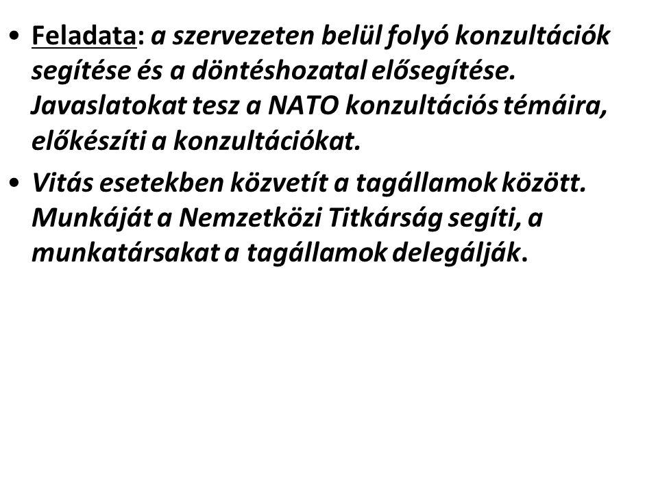 Feladata: a szervezeten belül folyó konzultációk segítése és a döntéshozatal elősegítése. Javaslatokat tesz a NATO konzultációs témáira, előkészíti a konzultációkat.