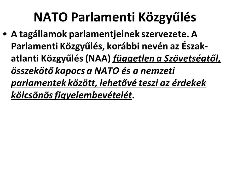 NATO Parlamenti Közgyűlés