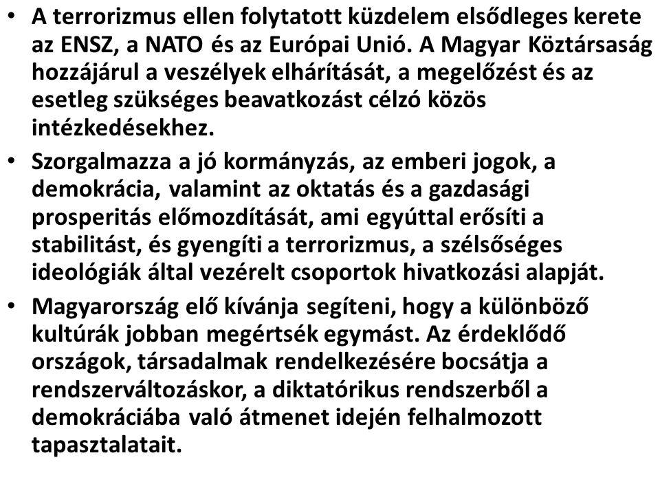 A terrorizmus ellen folytatott küzdelem elsődleges kerete az ENSZ, a NATO és az Európai Unió. A Magyar Köztársaság hozzájárul a veszélyek elhárítását, a megelőzést és az esetleg szükséges beavatkozást célzó közös intézkedésekhez.