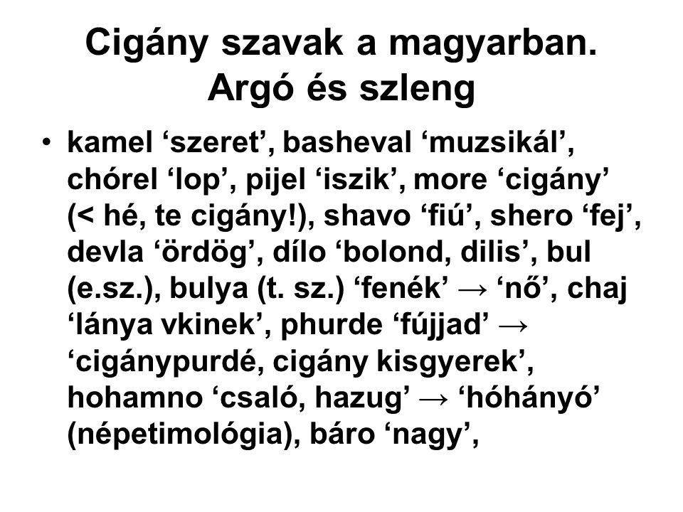 Cigány szavak a magyarban. Argó és szleng