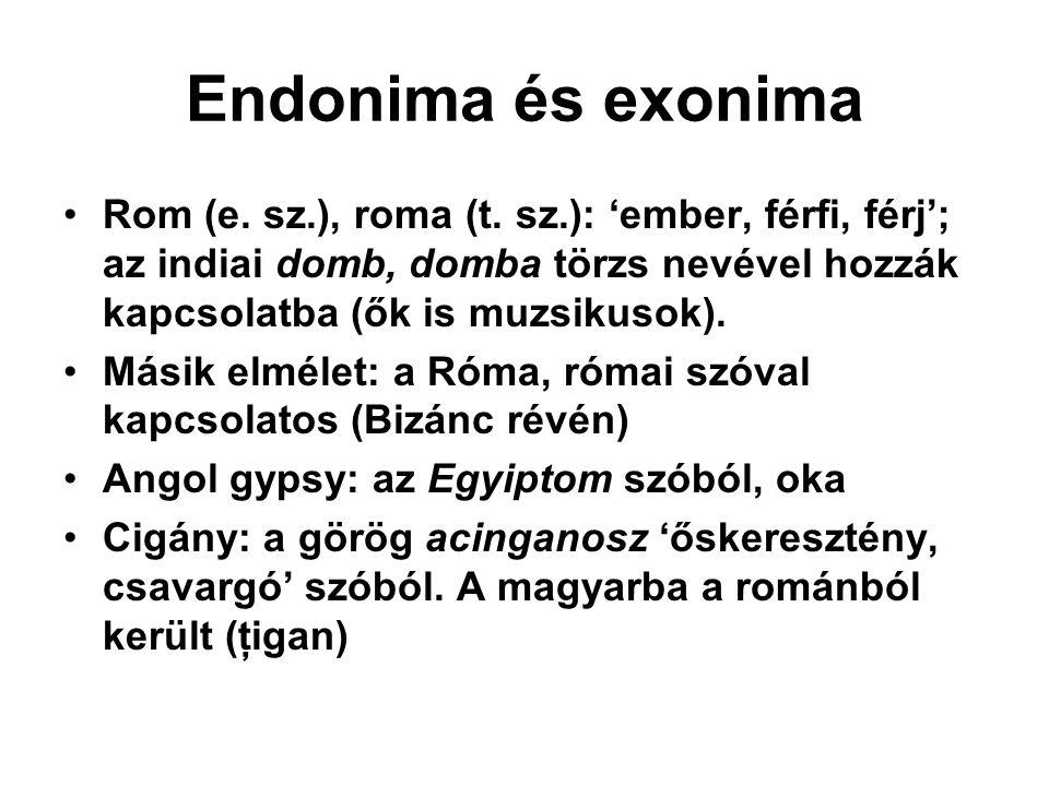 Endonima és exonima Rom (e. sz.), roma (t. sz.): 'ember, férfi, férj'; az indiai domb, domba törzs nevével hozzák kapcsolatba (ők is muzsikusok).