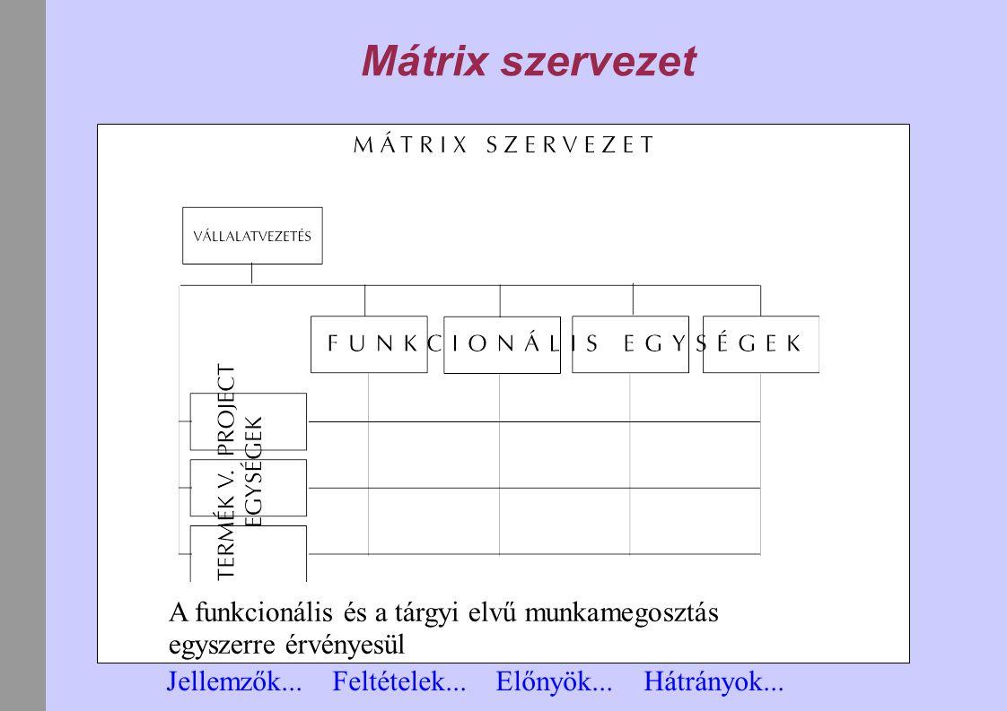 Mátrix szervezet A funkcionális és a tárgyi elvű munkamegosztás egyszerre érvényesül.