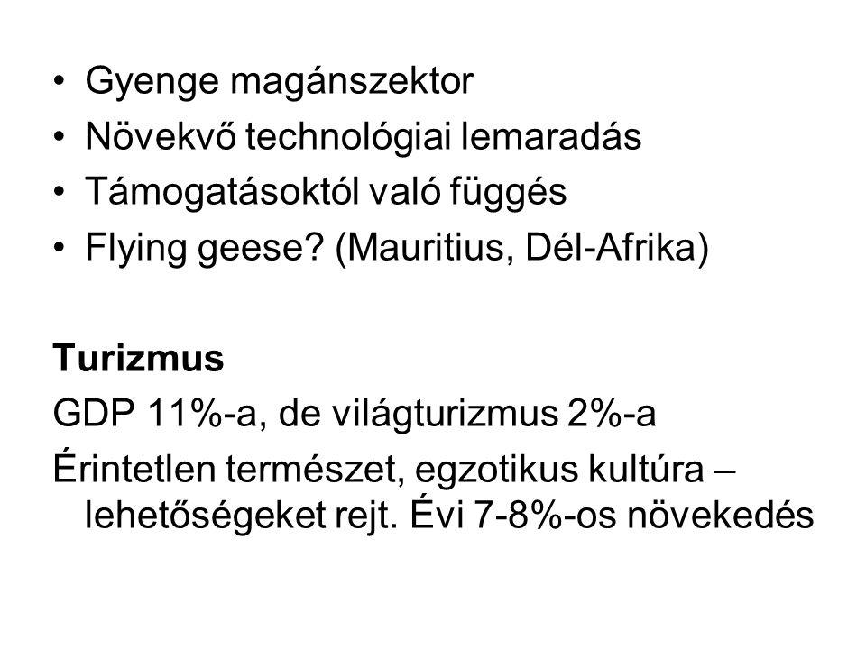 Gyenge magánszektor Növekvő technológiai lemaradás. Támogatásoktól való függés. Flying geese (Mauritius, Dél-Afrika)