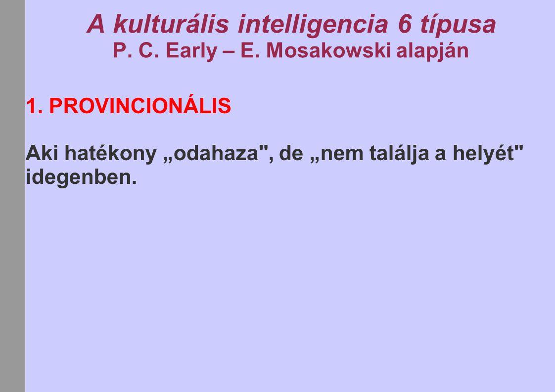 A kulturális intelligencia 6 típusa P. C. Early – E. Mosakowski alapján