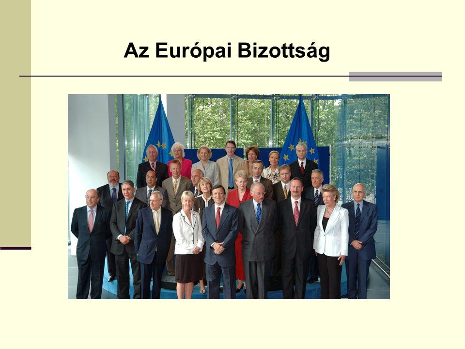 Az Európai Bizottság