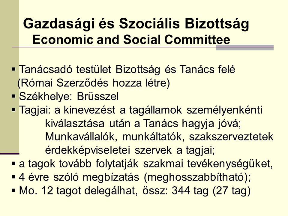 Gazdasági és Szociális Bizottság