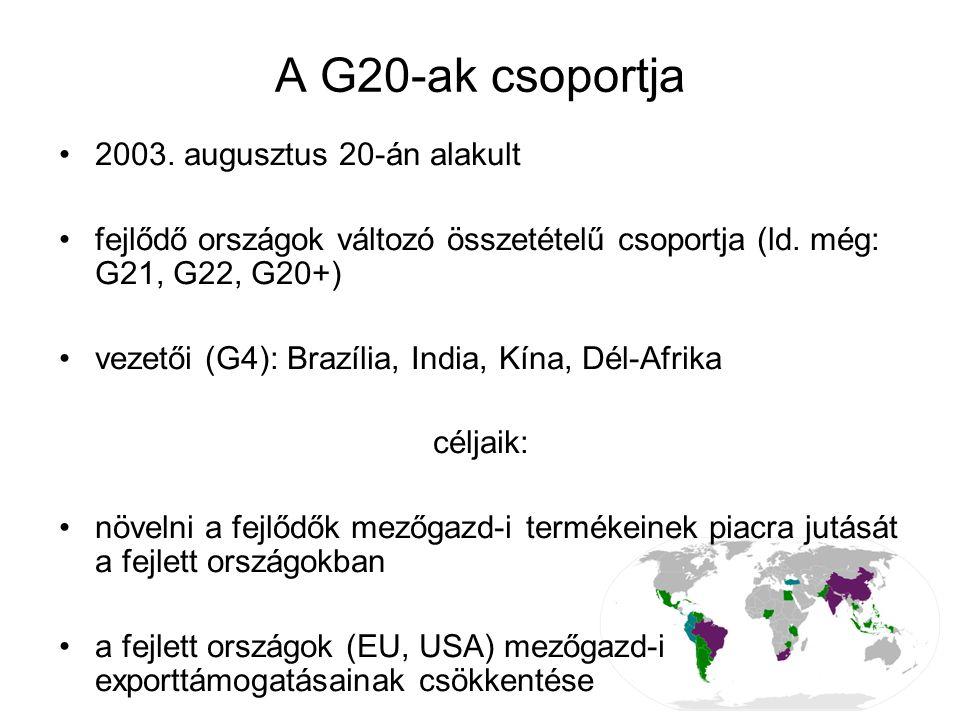 A G20-ak csoportja 2003. augusztus 20-án alakult