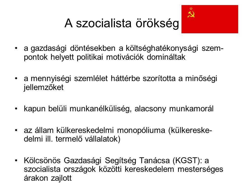 A szocialista örökség a gazdasági döntésekben a költséghatékonysági szem-pontok helyett politikai motivációk domináltak.