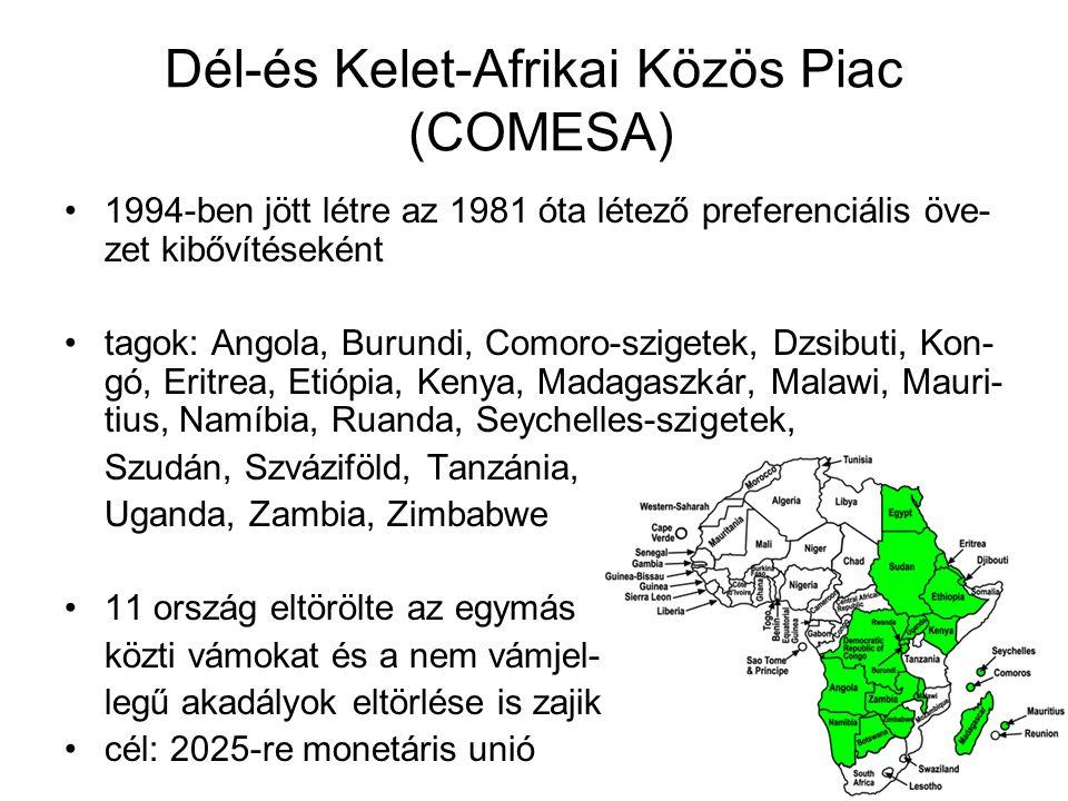 Dél-és Kelet-Afrikai Közös Piac (COMESA)