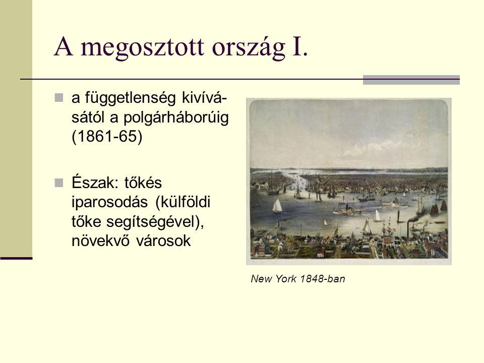 A megosztott ország I. a függetlenség kivívá-sától a polgárháborúig (1861-65) Észak: tőkés iparosodás (külföldi tőke segítségével), növekvő városok.