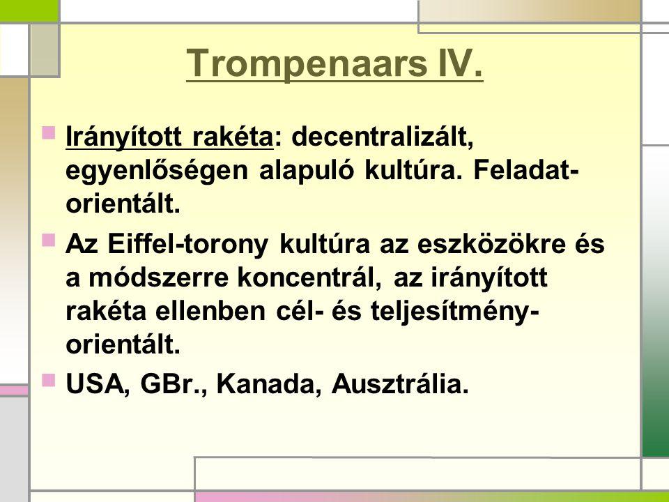 Trompenaars IV. Irányított rakéta: decentralizált, egyenlőségen alapuló kultúra. Feladat-orientált.