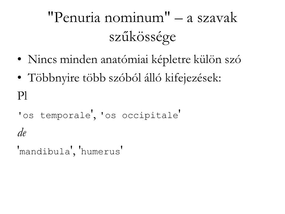 Penuria nominum – a szavak szűkössége