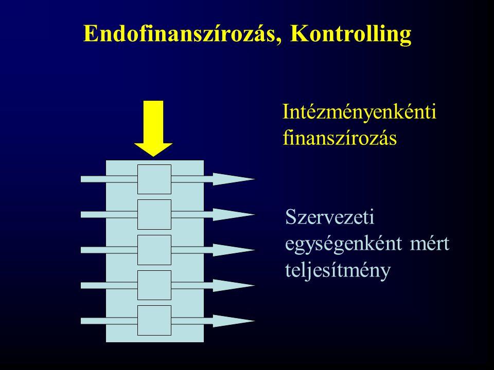 Endofinanszírozás, Kontrolling
