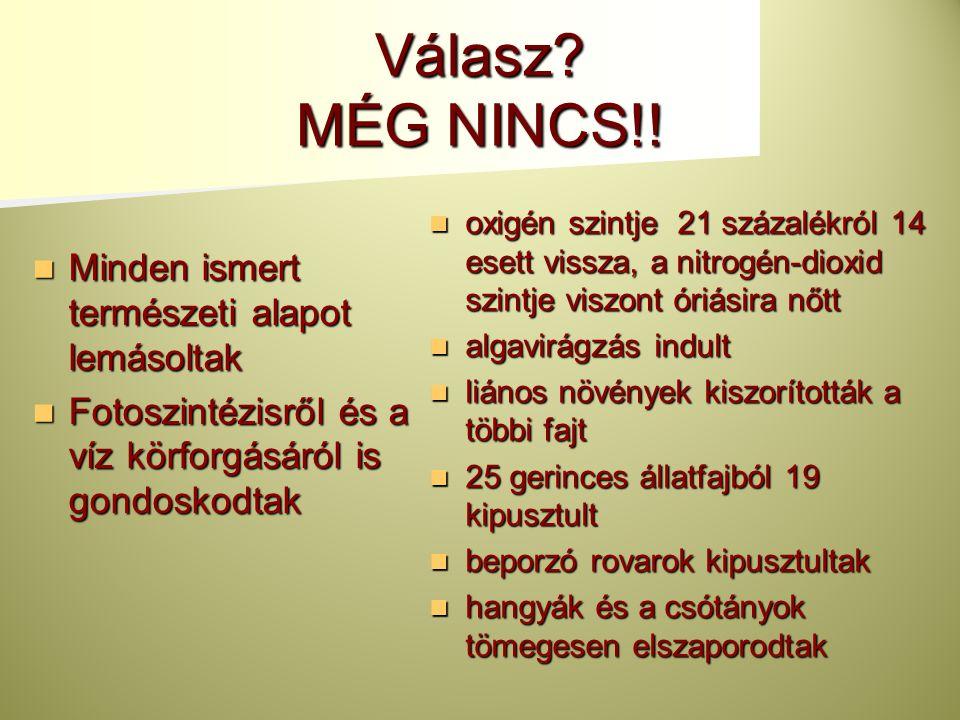 Válasz MÉG NINCS!! Minden ismert természeti alapot lemásoltak
