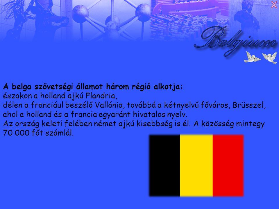 A belga szövetségi államot három régió alkotja: