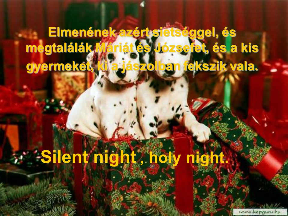 Silent night , holy night.