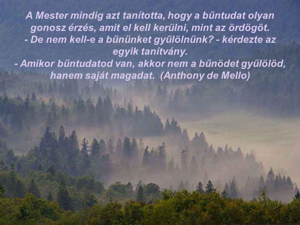 A Mester mindig azt tanította, hogy a bűntudat olyan gonosz érzés, amit el kell kerülni, mint az ördögöt.