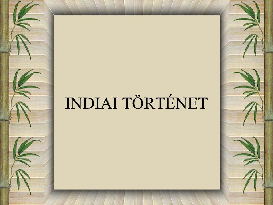 INDIAI TÖRTÉNET