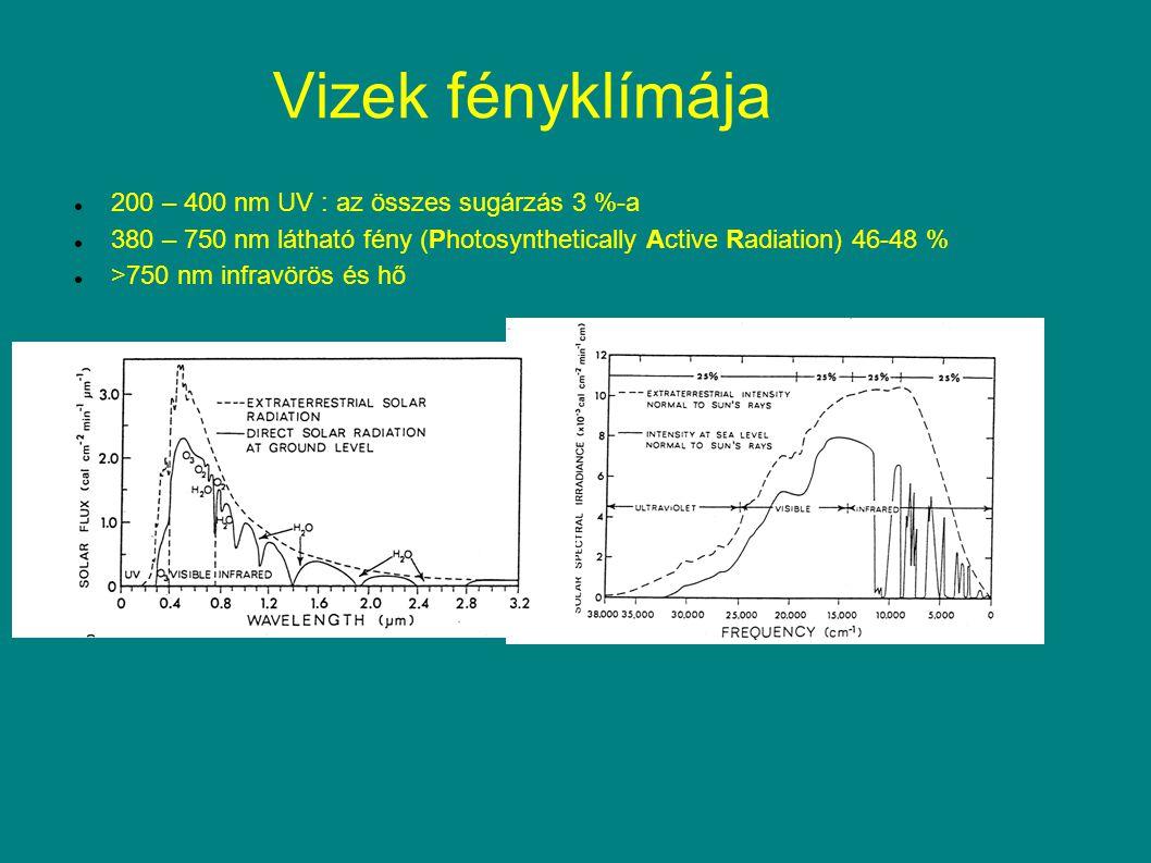 Vizek fényklímája 200 – 400 nm UV : az összes sugárzás 3 %-a