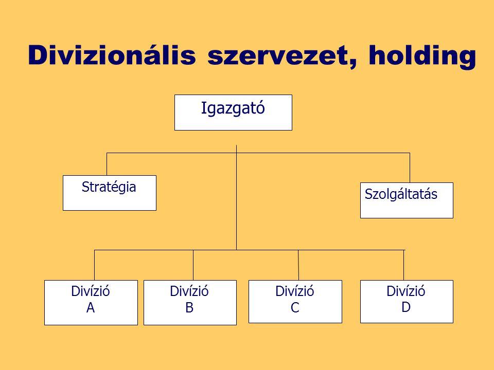 Divizionális szervezet, holding