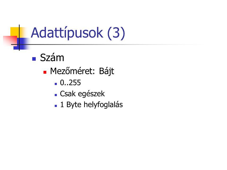 Adattípusok (3) Szám Mezőméret: Bájt 0..255 Csak egészek