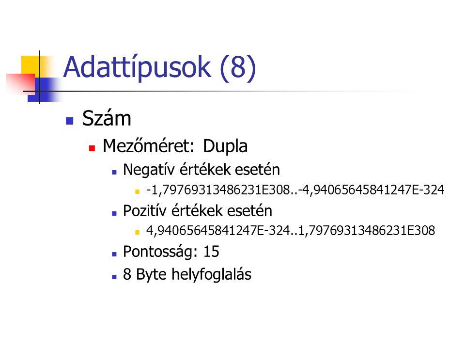 Adattípusok (8) Szám Mezőméret: Dupla Negatív értékek esetén