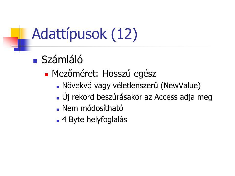 Adattípusok (12) Számláló Mezőméret: Hosszú egész