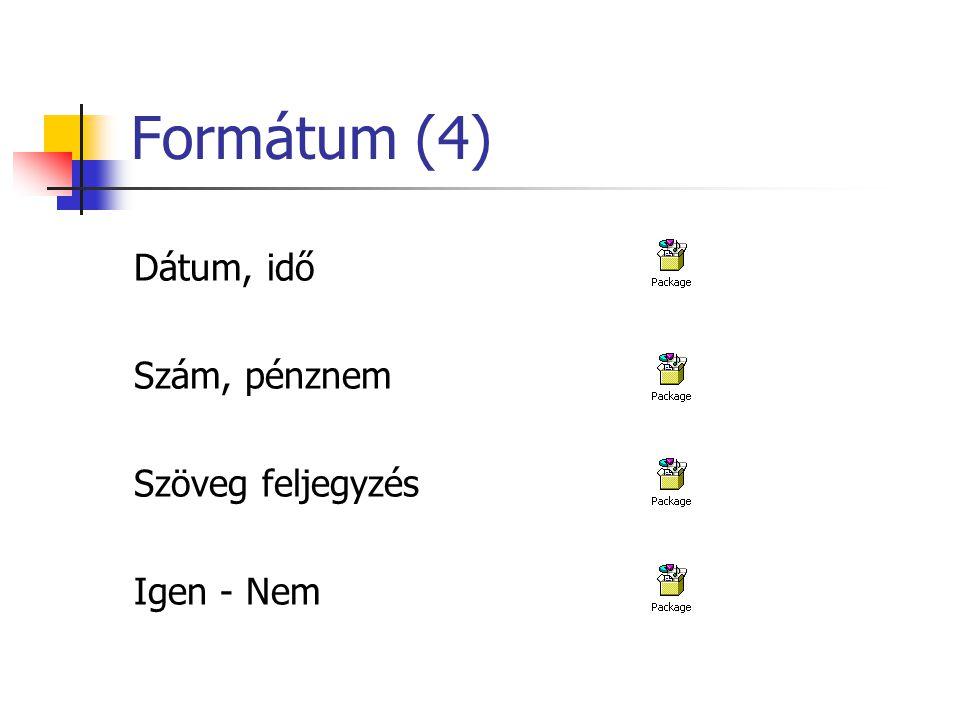 Formátum (4) Dátum, idő Szám, pénznem Szöveg feljegyzés Igen - Nem