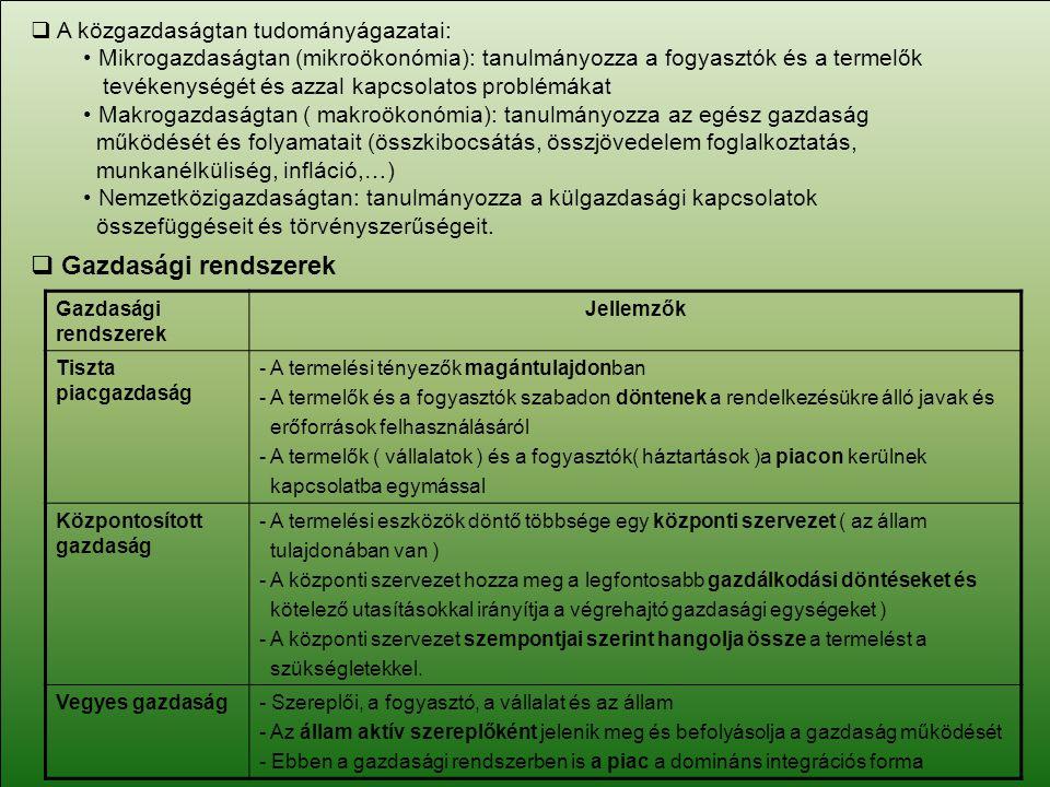 Gazdasági rendszerek A közgazdaságtan tudományágazatai: