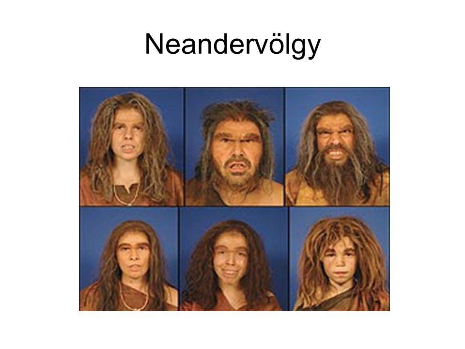 Neandervölgy