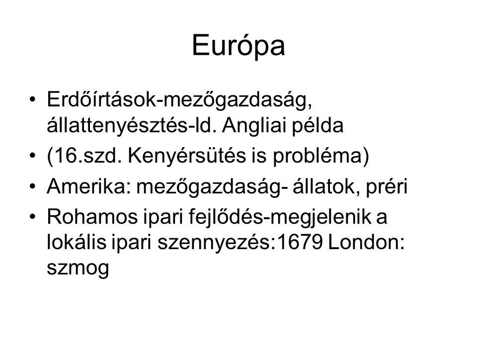 Európa Erdőírtások-mezőgazdaság, állattenyésztés-ld. Angliai példa