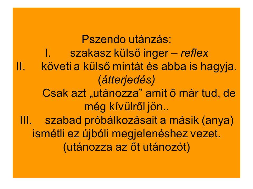 Pszendo utánzás: I. szakasz külső inger – reflex II