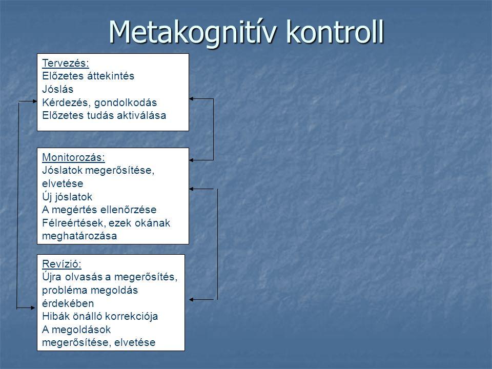 Metakognitív kontroll