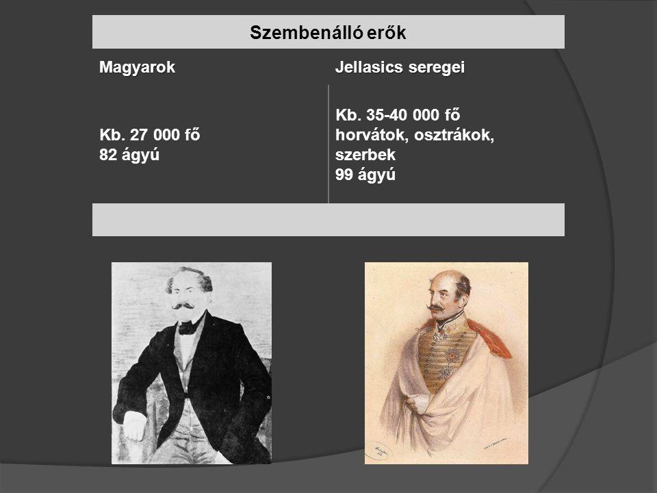 Szembenálló erők Magyarok Jellasics seregei