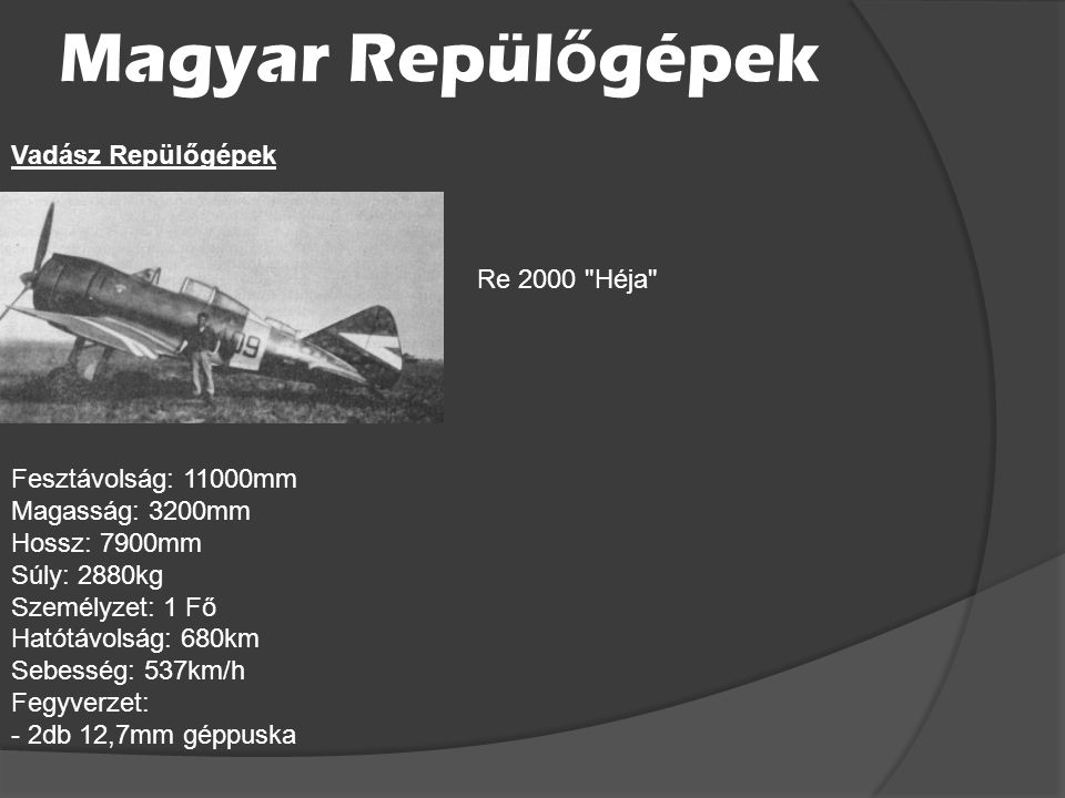 Magyar Repülőgépek Vadász Repülőgépek Re 2000 Héja