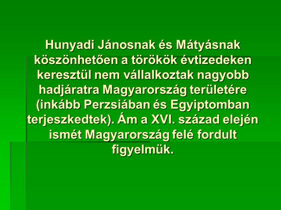 Hunyadi Jánosnak és Mátyásnak köszönhetően a törökök évtizedeken keresztül nem vállalkoztak nagyobb hadjáratra Magyarország területére (inkább Perzsiában és Egyiptomban terjeszkedtek).