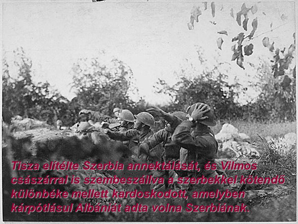 Tisza elítélte Szerbia annektálását, és Vilmos császárral is szembeszállva a szerbekkel kötendő különbéke mellett kardoskodott, amelyben kárpótlásul Albániát adta volna Szerbiának.
