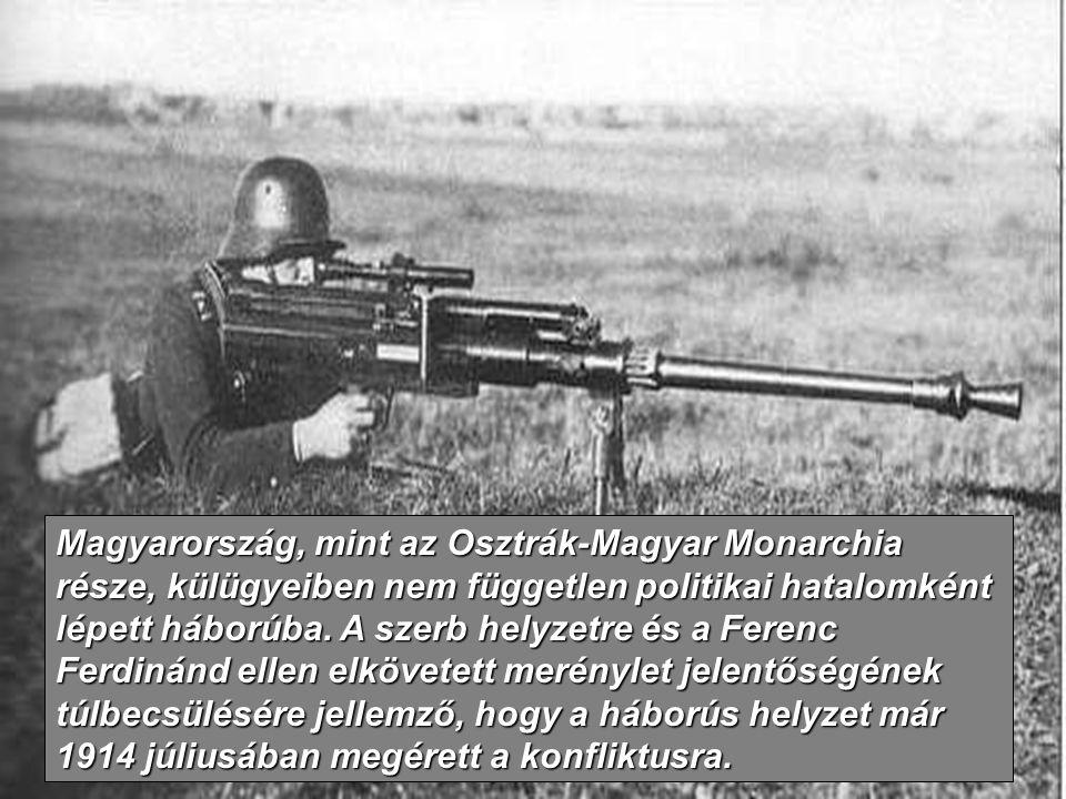 Magyarország, mint az Osztrák-Magyar Monarchia része, külügyeiben nem független politikai hatalomként lépett háborúba.