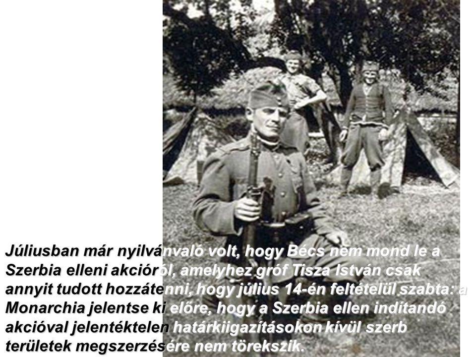 Júliusban már nyilvánvaló volt, hogy Bécs nem mond le a Szerbia elleni akcióról, amelyhez gróf Tisza István csak annyit tudott hozzátenni, hogy július 14-én feltételül szabta: a Monarchia jelentse ki előre, hogy a Szerbia ellen indítandó akcióval jelentéktelen határkiigazításokon kívül szerb területek megszerzésére nem törekszik.