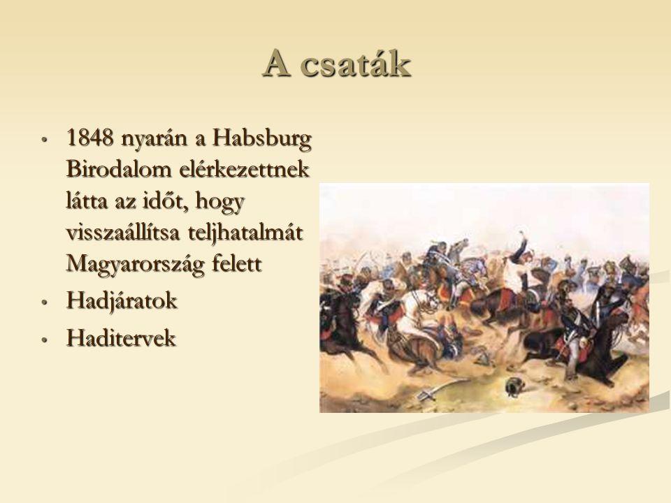 A csaták 1848 nyarán a Habsburg Birodalom elérkezettnek látta az időt, hogy visszaállítsa teljhatalmát Magyarország felett.