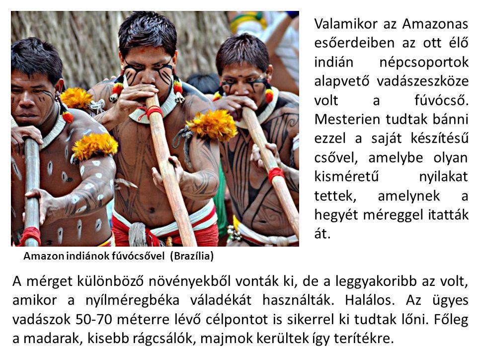 Valamikor az Amazonas esőerdeiben az ott élő indián népcsoportok alapvető vadászeszköze volt a fúvócső. Mesterien tudtak bánni ezzel a saját készítésű csővel, amelybe olyan kisméretű nyilakat tettek, amelynek a hegyét méreggel itatták át.