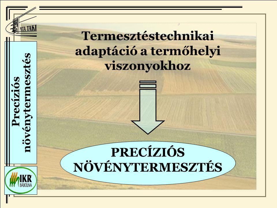 Termesztéstechnikai adaptáció a termőhelyi viszonyokhoz
