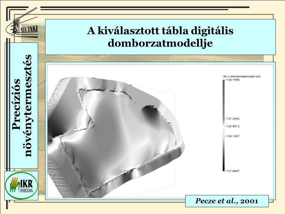A kiválasztott tábla digitális domborzatmodellje