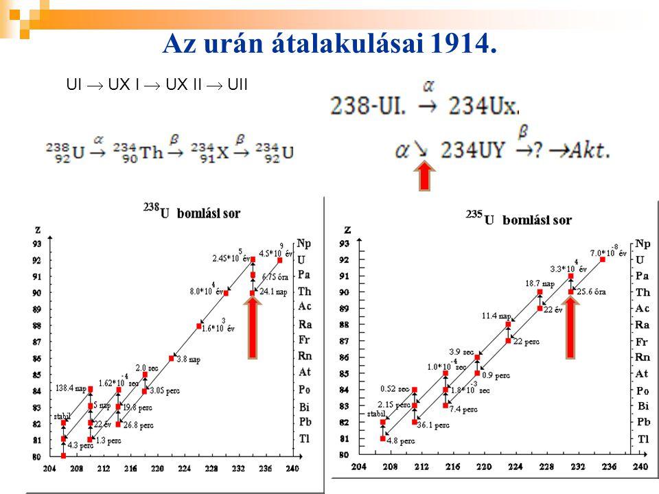 Az urán átalakulásai 1914. UI  UX I  UX II  UII