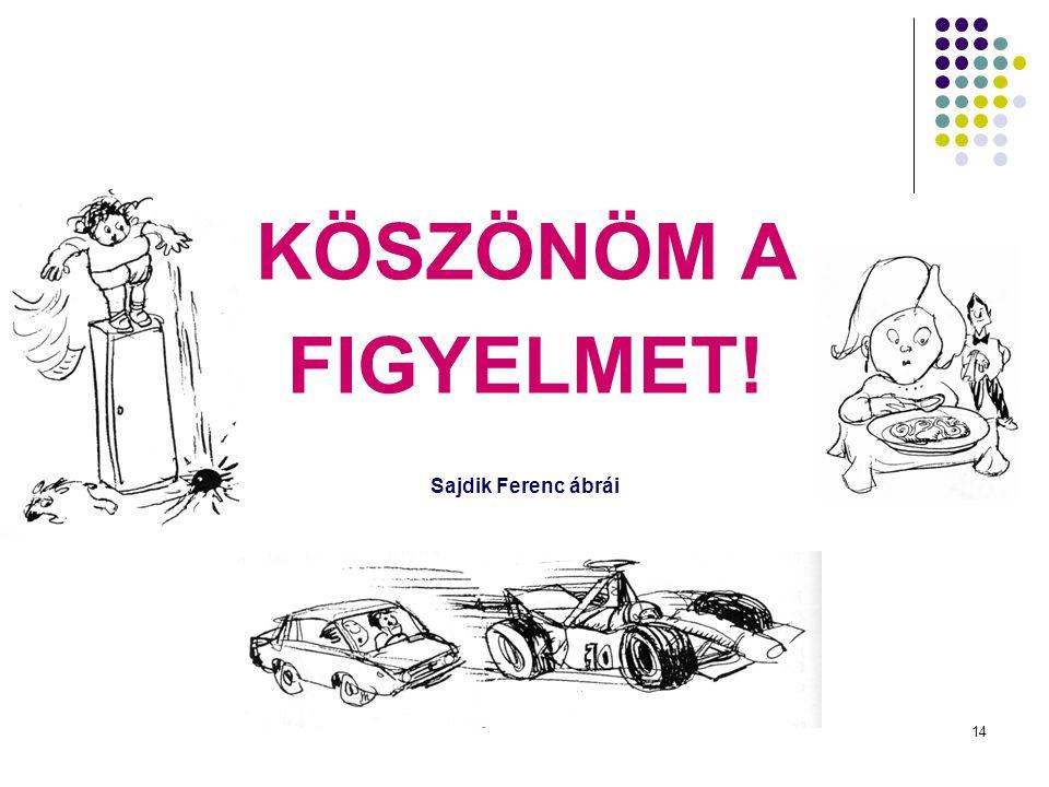KÖSZÖNÖM A FIGYELMET! Sajdik Ferenc ábrái