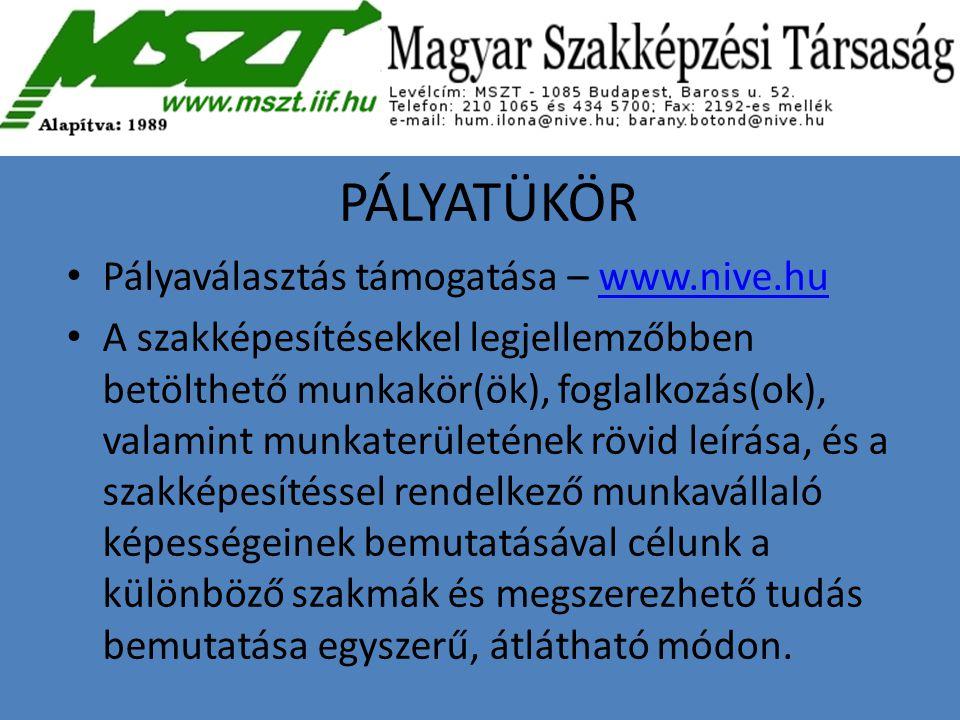 PÁLYATÜKÖR Pályaválasztás támogatása – www.nive.hu