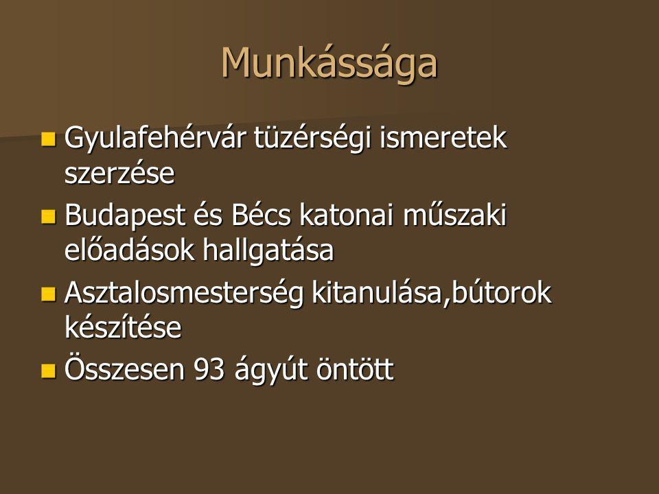 Munkássága Gyulafehérvár tüzérségi ismeretek szerzése