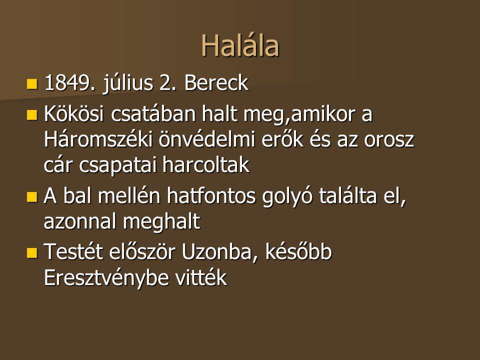 Halála 1849. július 2. Bereck. Kökösi csatában halt meg,amikor a Háromszéki önvédelmi erők és az orosz cár csapatai harcoltak.
