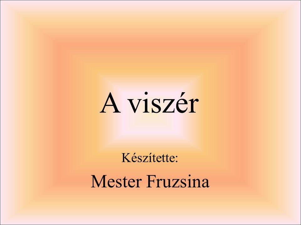 Készítette: Mester Fruzsina