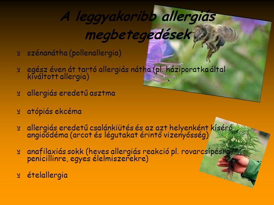 A leggyakoribb allergiás megbetegedések